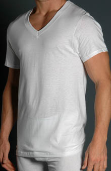 Fruit Of The Loom 2525VX V Neck T-Shirts Big Man 3 Pack at Sears.com